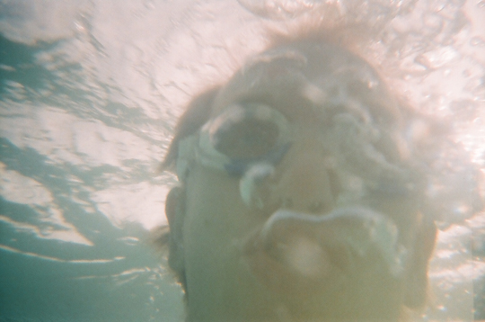 Reusable Underwater Lomo Camera Example