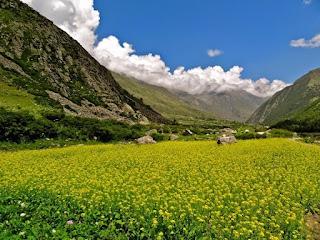 Voyage Dharamshala en Inde du nord