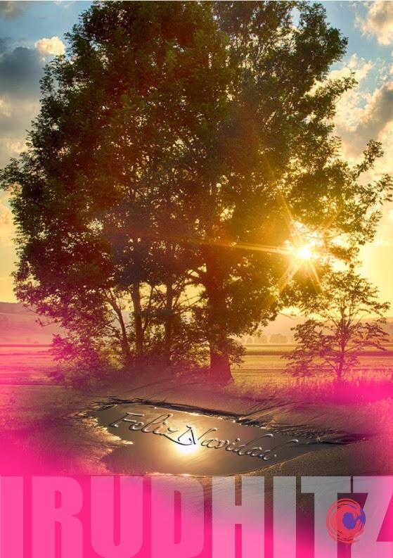 Imagen descriptiva de las marcas que se asemejan a los árboles de verdad, cuyas ramas brillan a la luz del sol durante todo el año y nos dan vida.