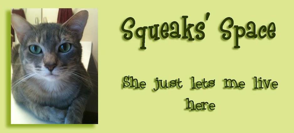 Squeaks' Space