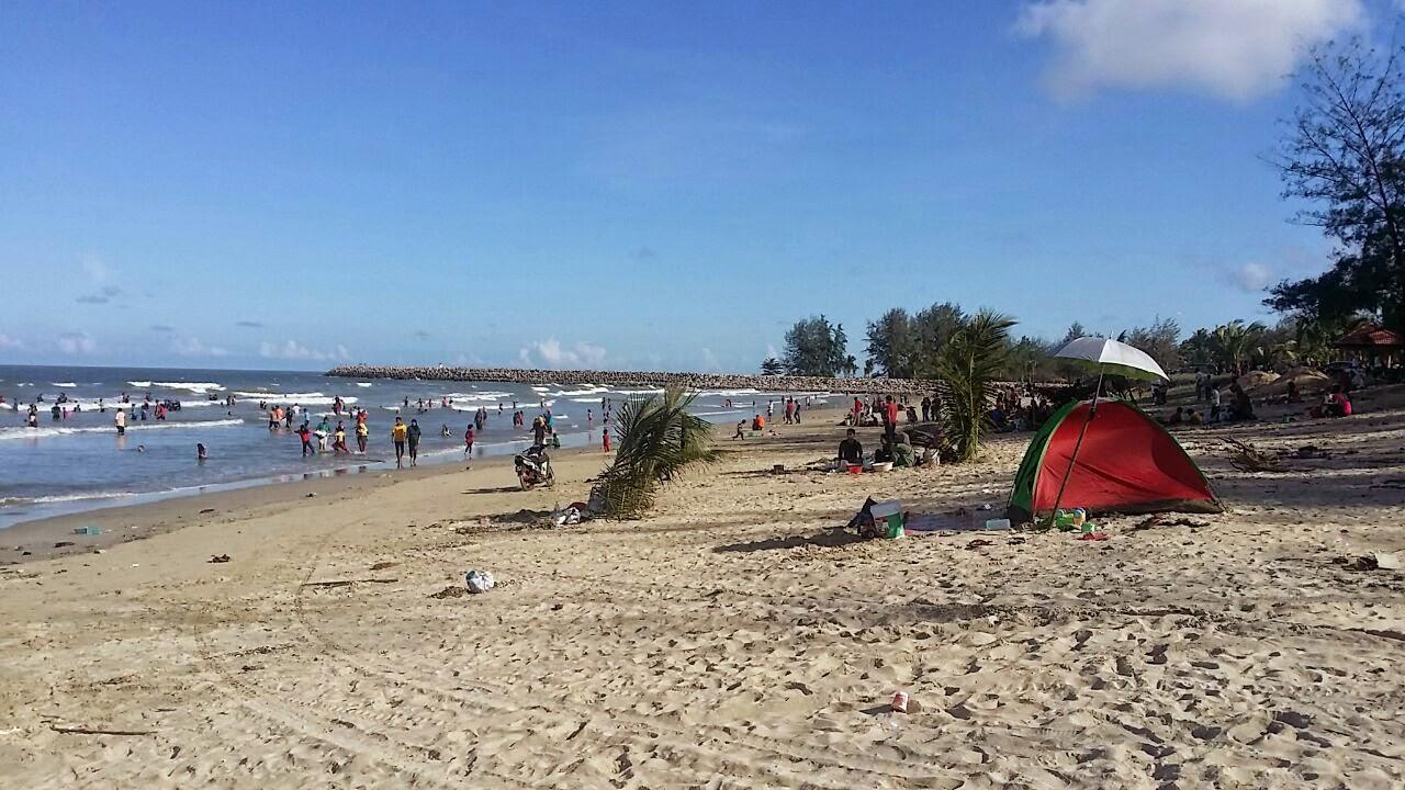 pantai marang dibanjiri kerang.