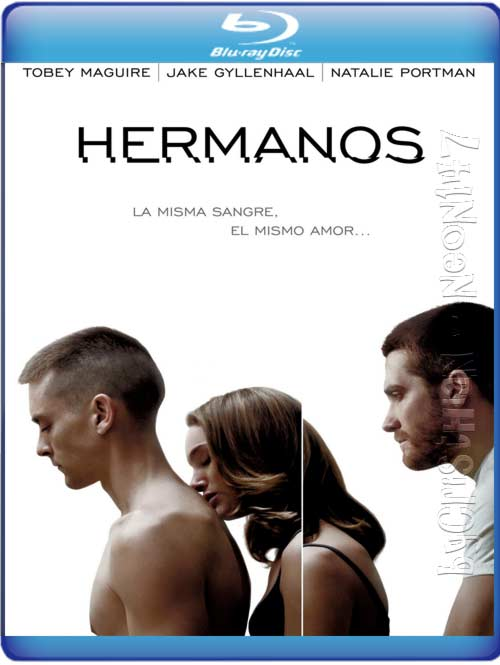 Hermanos (Español Latino) (BRrip) (Audio AC3) (2011)