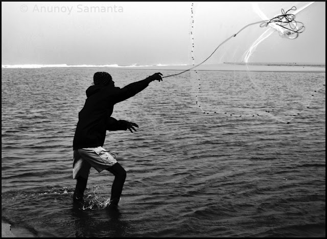 Fisherman throwing his Net