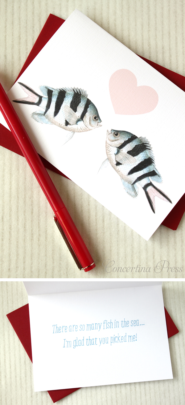 Cute Nautical Fish Valentines Day Card or Anniversary Card from Concertina Press