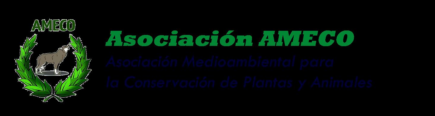 Asociación AMECO