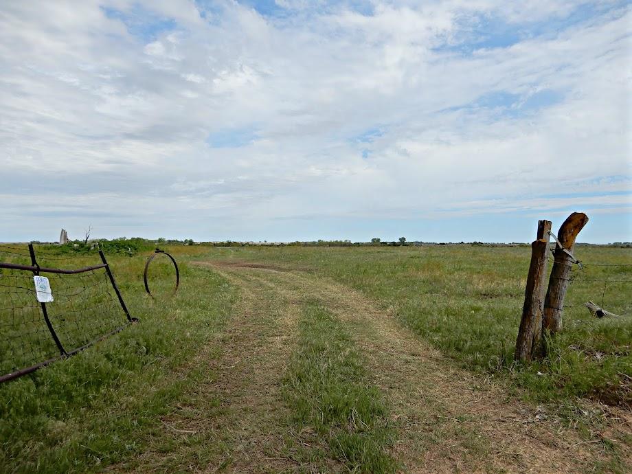 Ninnescah Pasture
