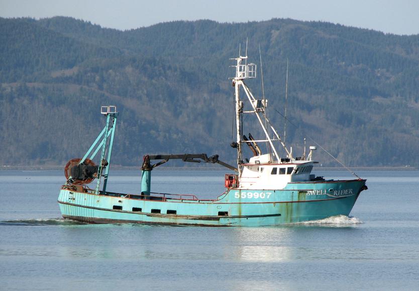Fishing Boat Swell Rider