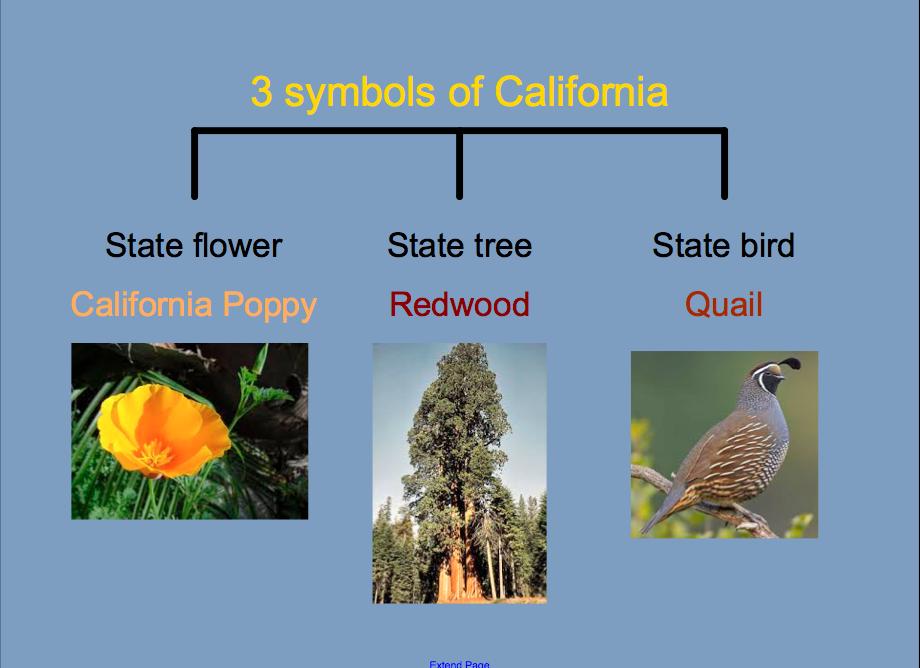 Kinder Learning Garden California Symbols