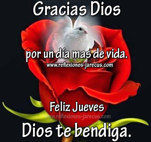 Feliz jueves - Dios te bendiga