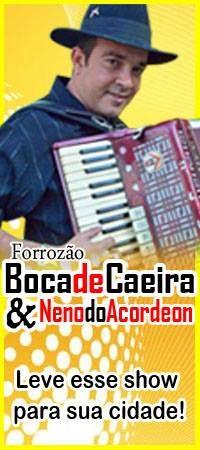 NENO DO ACORDEON