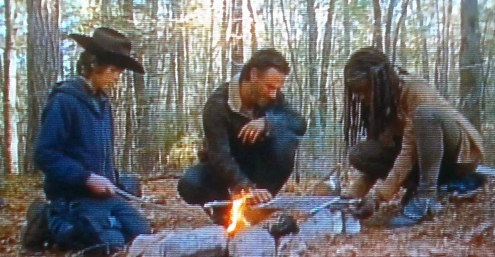 The Walking Dead season 4 finale, Walking Dead season 4, TWD s4e16, TWD finale, Rick Grimes, Daryl, Michonne