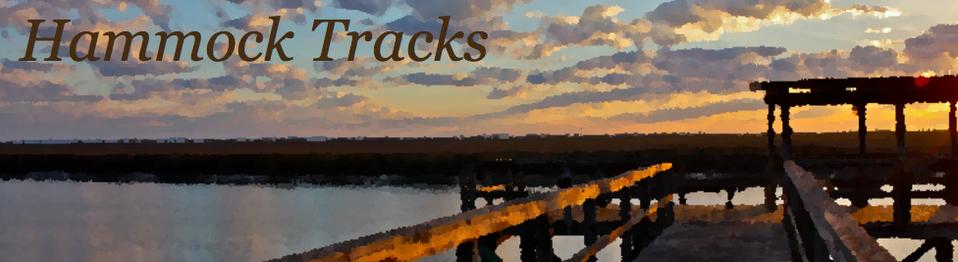 Hammock Track Tales