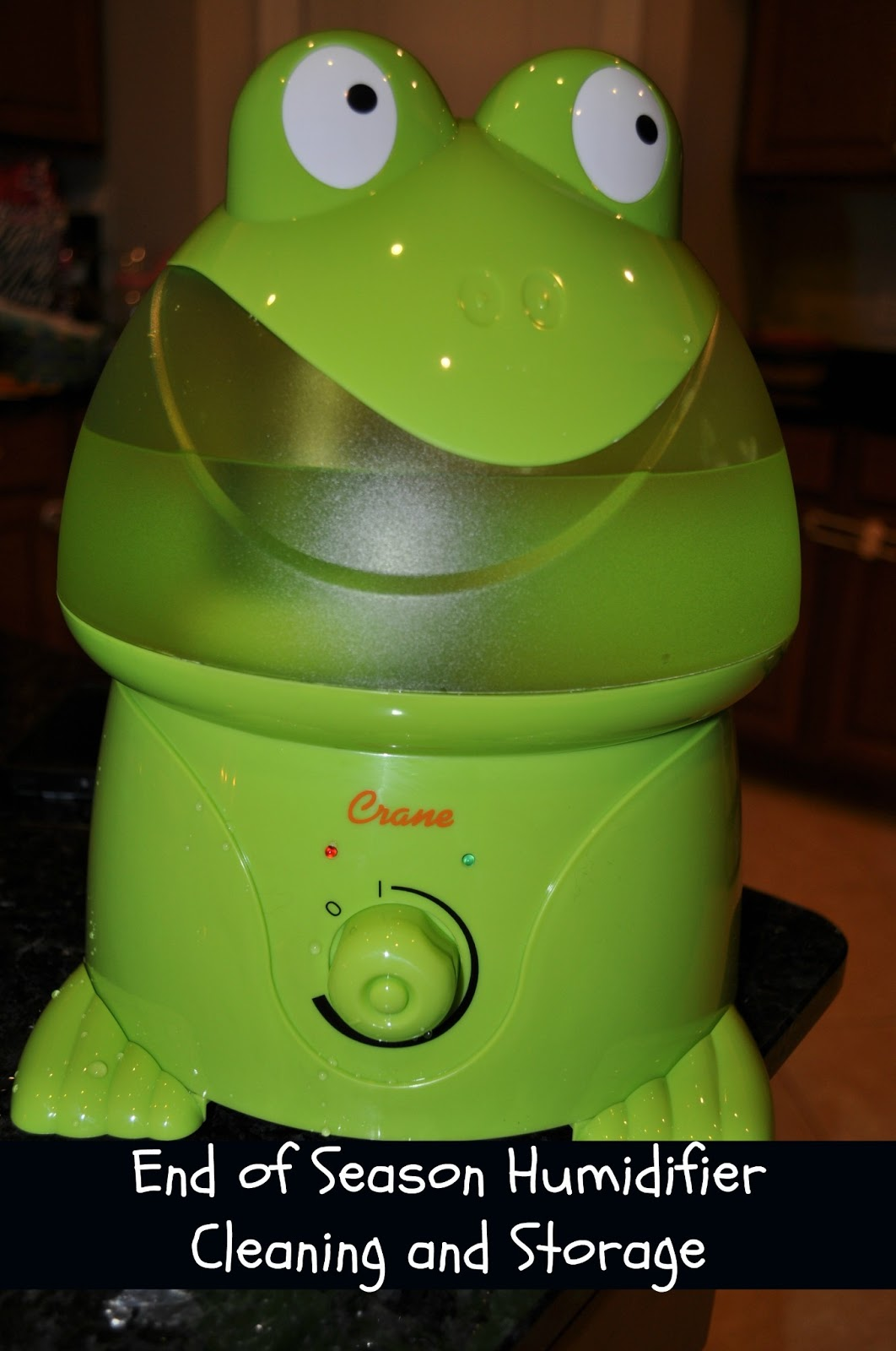 : How to Clean and Store Your Humidifier at The End of Flu Season #B06718