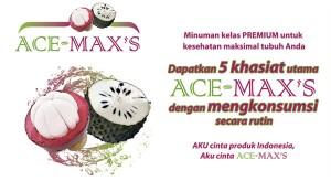 Agen Ace Maxs Jakarta Selatan