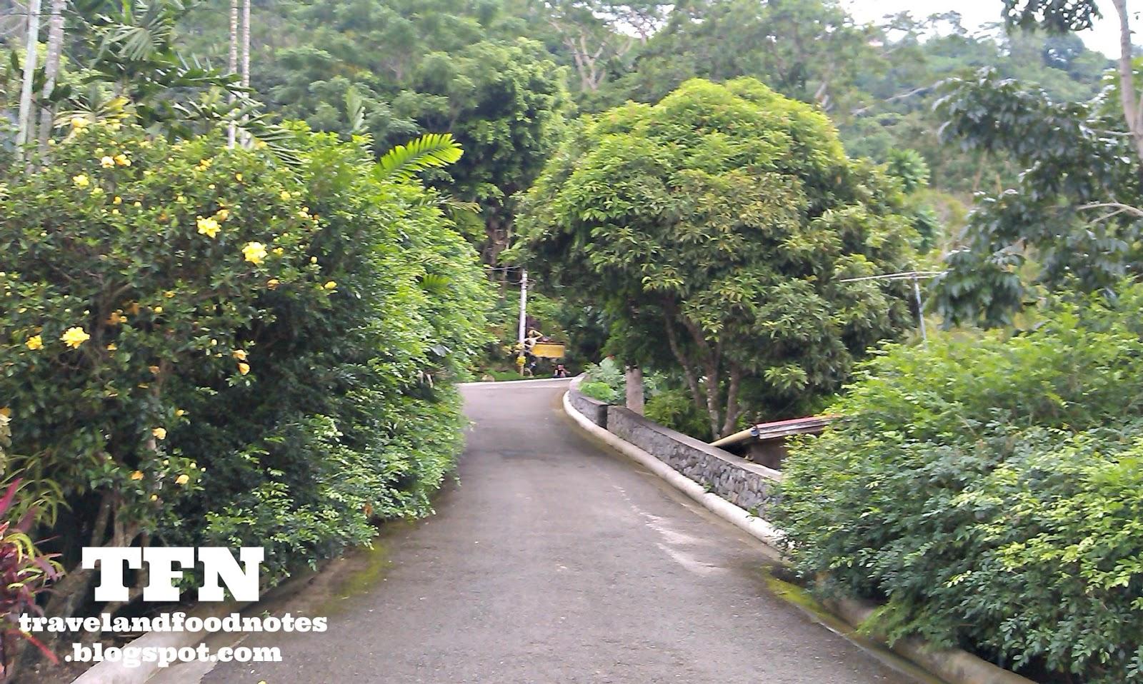 Nature Park In Cebu Gallery