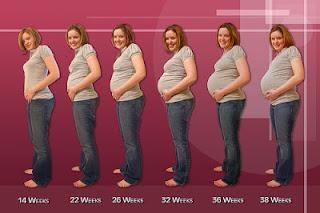 Cara cepat hamil secara alami