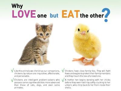 djurförsök debatt argument