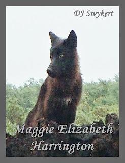 http://www.amazon.com/Maggie-Elizabeth-Harrington-DJ-Swykert-ebook/dp/B00DPC2CJC/ref=sr_1_5?ie=UTF8&qid=1383331178&sr=8-5&keywords=DJ+Swykert