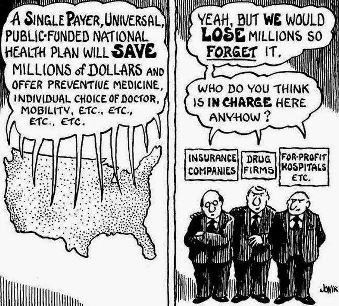 wiki single payer healthcare