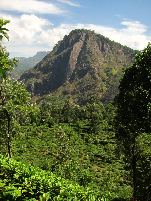 Sandrine et Manuel au Sri Lanka