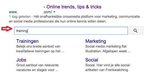Sitelinks search box Google
