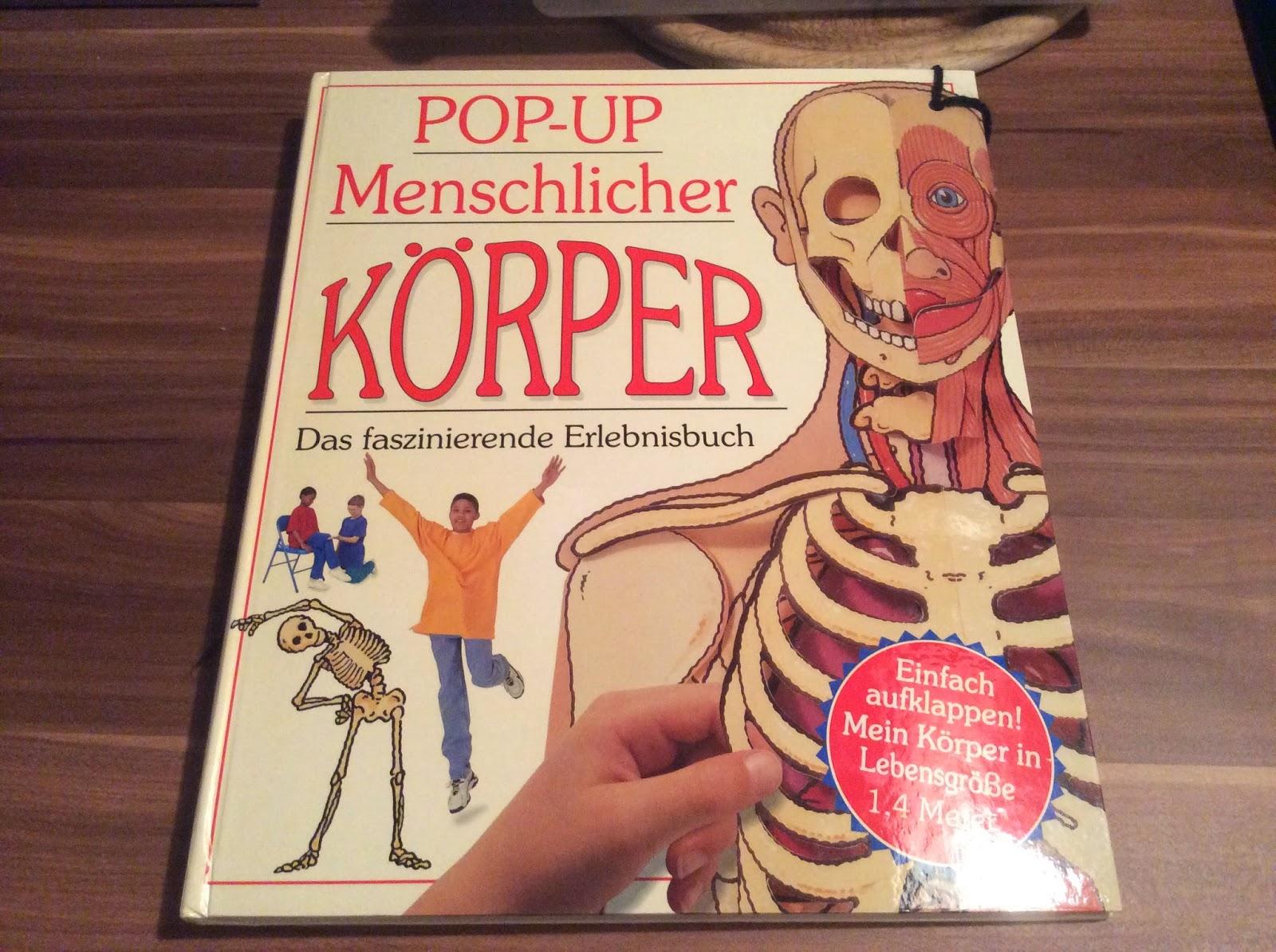 teaching on the brightside: POP UP Buch Menschlicher Körper