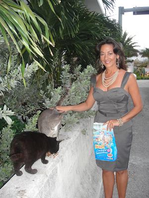 Christine Michaels community cats Riverfront Cats
