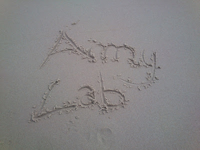 Amy Lab