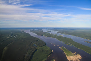 Image of Moose River Estuary