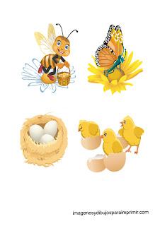 abejas, mariposas y nidos  Animales en primavera para imprimir