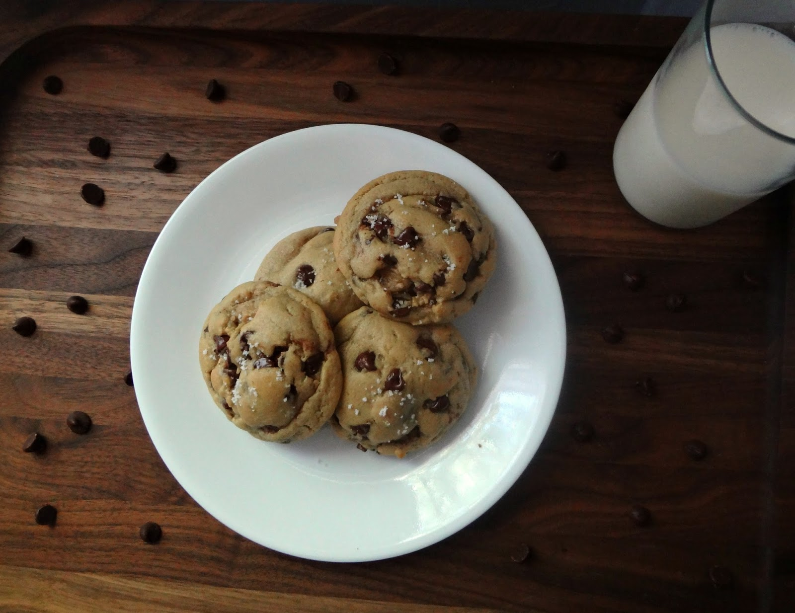 cookies chocolate chip cookies chocolate chip cookies bakery style xxl ...