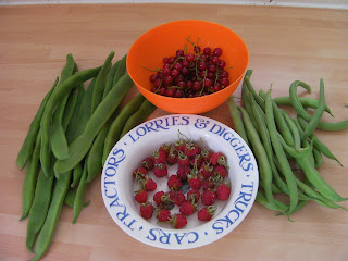homegrown produce: redcurrants, raspberries and 2 kinds of bean