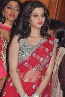 Vedhika in Saree 4.jpg