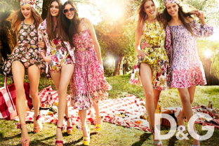 D&G Collection