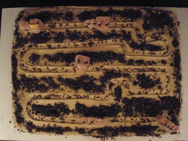 Ant Farm Cake
