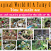 fairy-garden-ideas.png