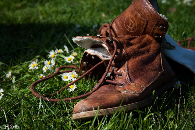 Old Shoe with Daisies by Madder Hatter