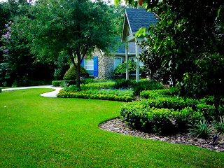 Gilbert Landscaping Services