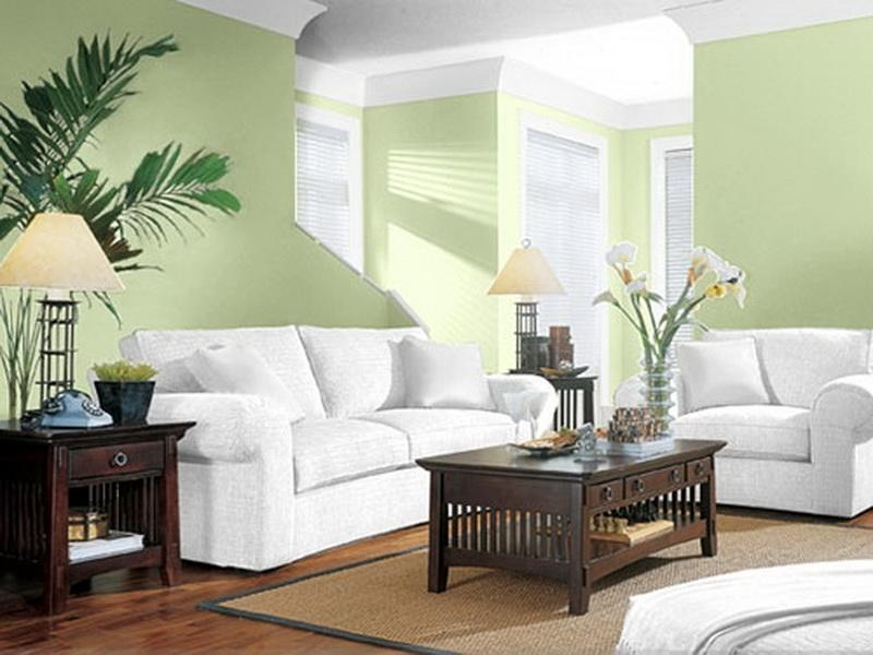 New interior karebet - Living room paint colour ideas 2015 ...