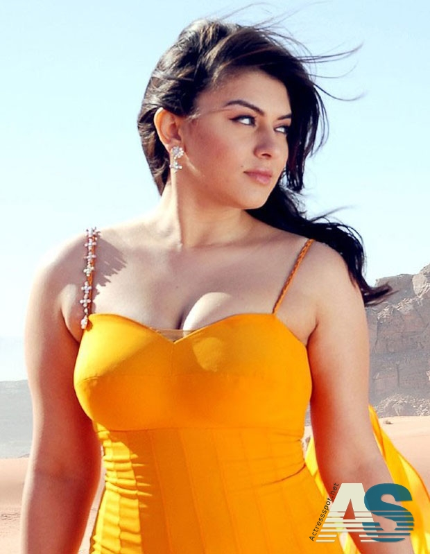 Hansika Hot Cleavage Show Photos