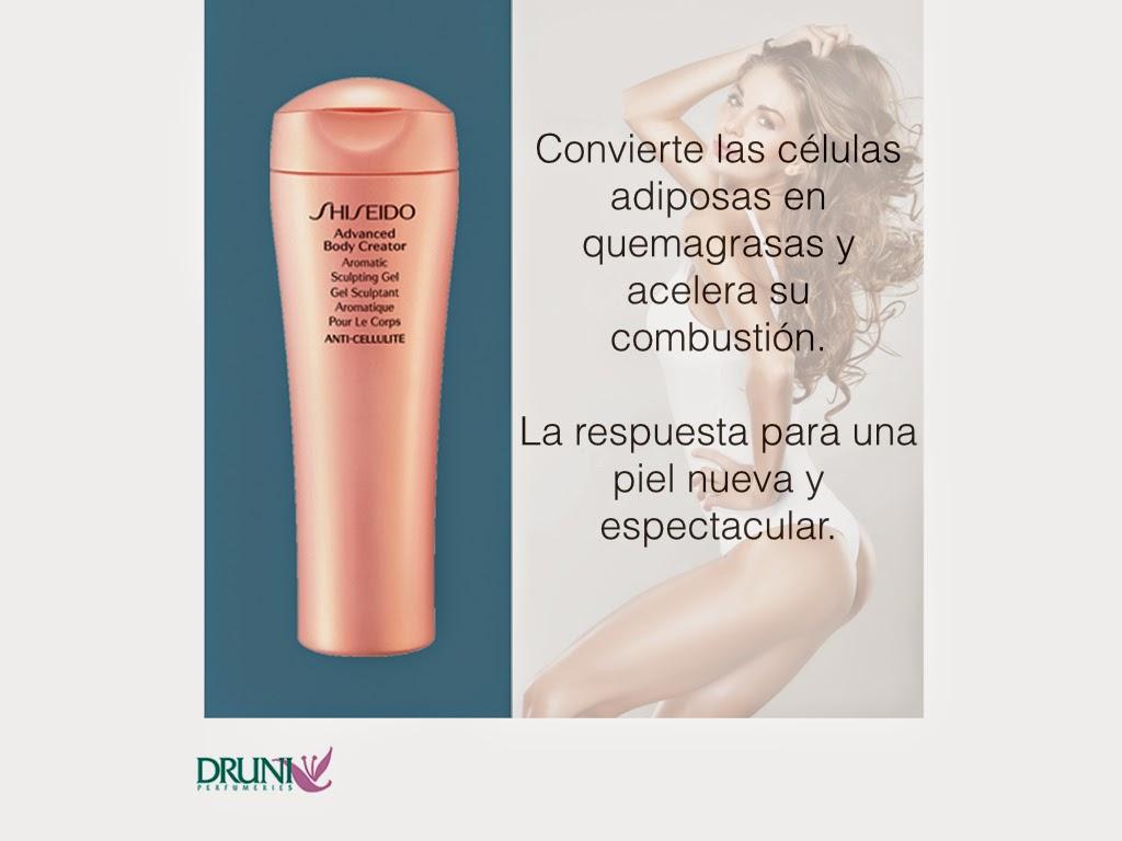 Shiseido Celulitis Druni