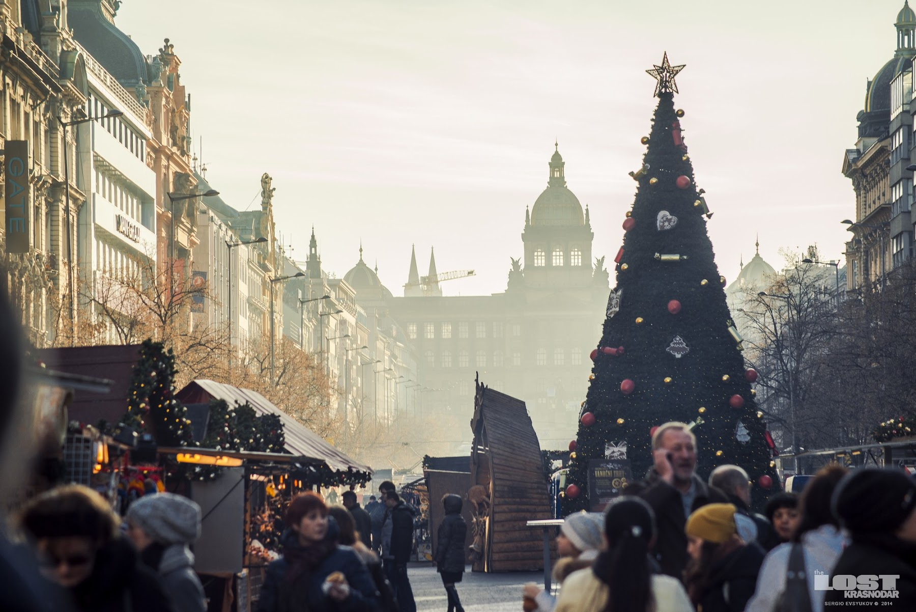 Christmas tree on the Wenceslas Square