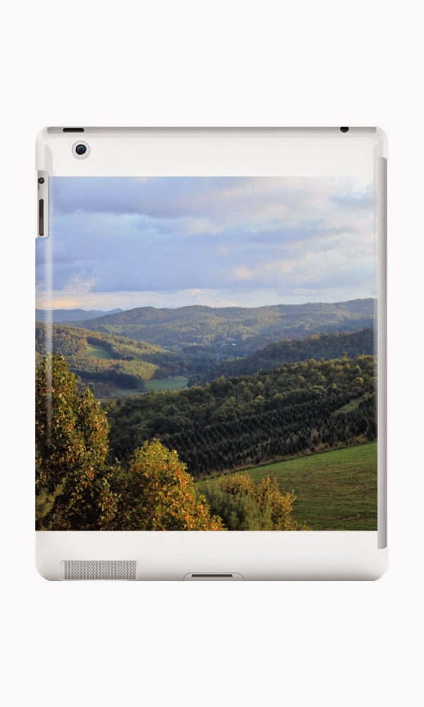 http://www.redbubble.com/people/gluvsc/shop/ipad-cases?ref=artist_shop_product_refinement