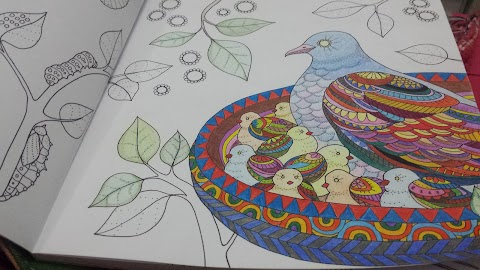 The Obsession with Adult Coloring Books
