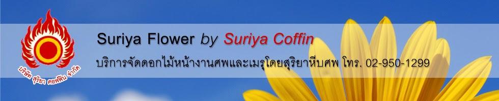Suriya Flower