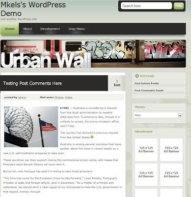 10 Free Premium Looking WordPress Themes with Live Demo