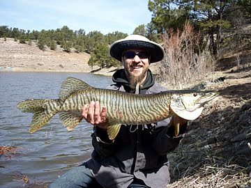 Information about fishing spinners for your next outdoor for Fishing new mexico
