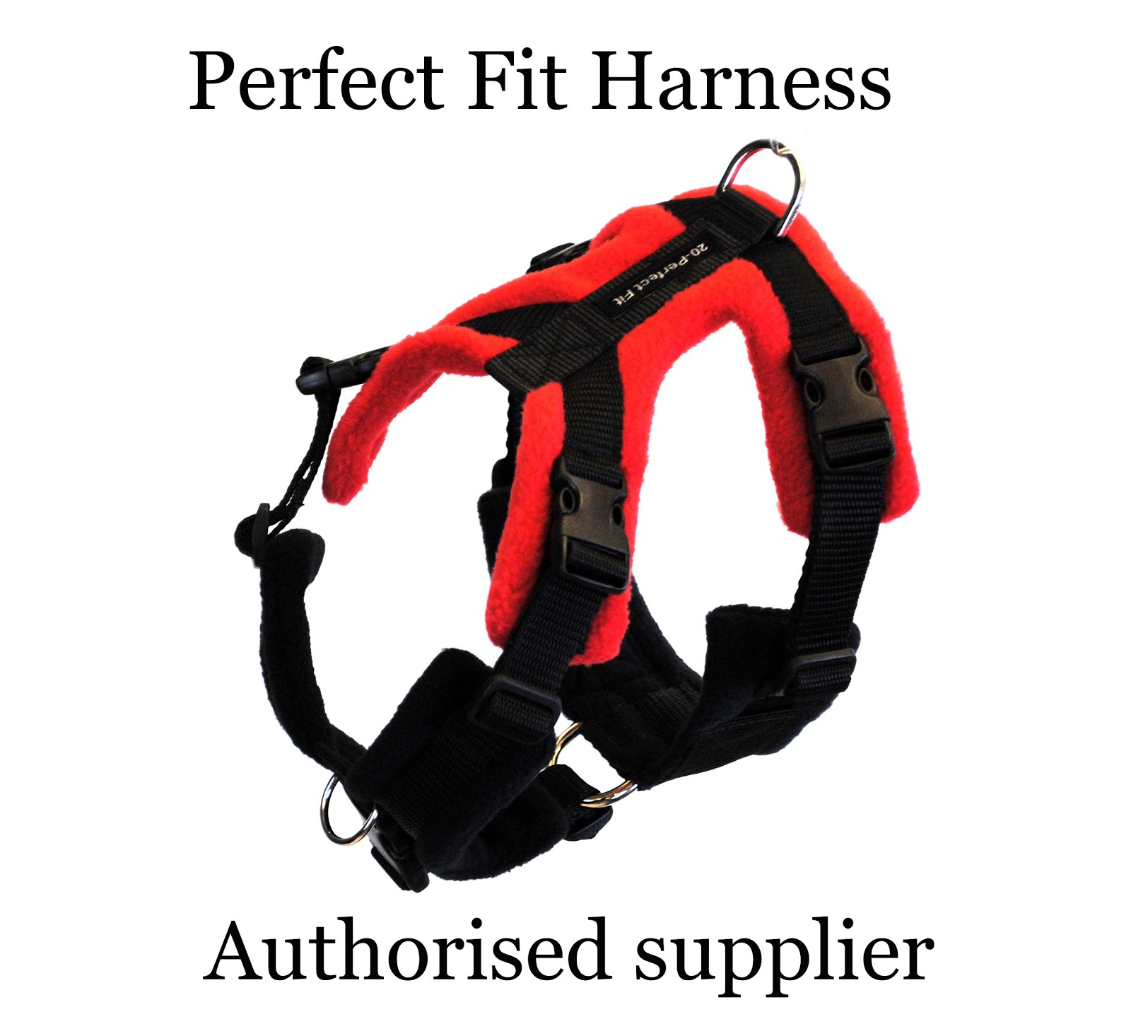 Perfect Fit Harness