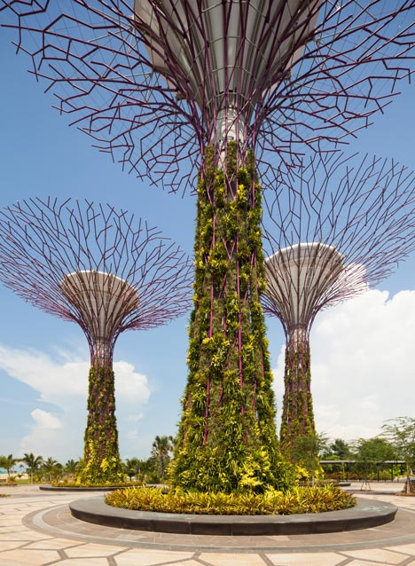 18 man-made Supertrees, from 25m to 50m tall, are host to more than 200 species and varieties of bromeliads, orchids, ferns and climbers.