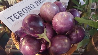 Benefits of Eggplant (Brinjal) During Pregnancy